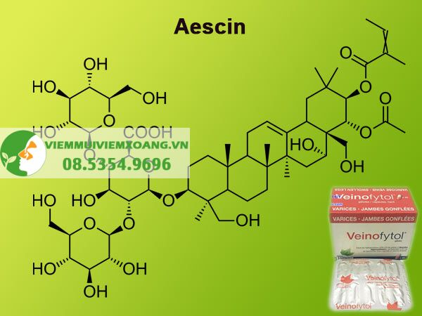 Thành phần thuốc Veinofytol gồm Aescin