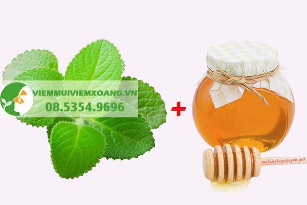 Trị ho bằng mật ong và húng chanh