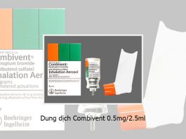 Combivent 0.5mg/2.5ml